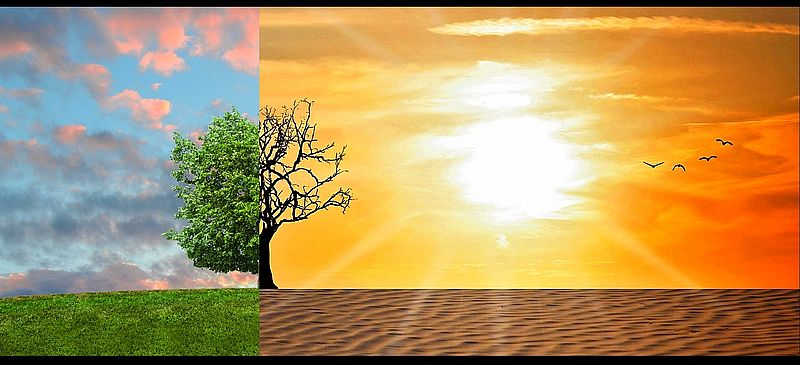 pourquoi poser un film solaire anti chaleur